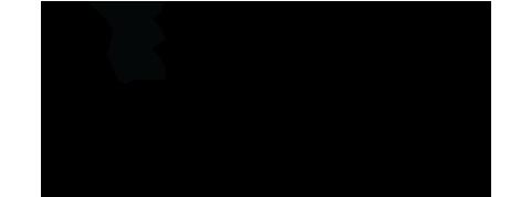 logo_essence_fest_2017.png