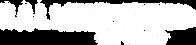 logo Rally Playero WEB-white.png