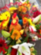 rodney in flowers.jpg
