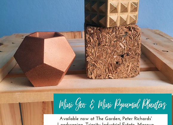 Mini Geosphere & Mini Pyramid Concrete Planters (shown in Rose Gold & Gold) from so.hippie