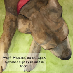 Woof. Watercolour on Paper.
