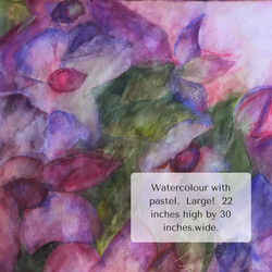 Watercolour with pastel. Large 21 inches by 30 inches. (1)