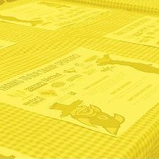 Sponsors_Yellow.jpg