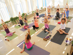 Yoga & Wellness (9)