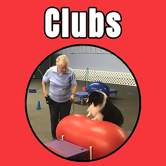 clubs tile.png