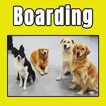 boarding tile.png