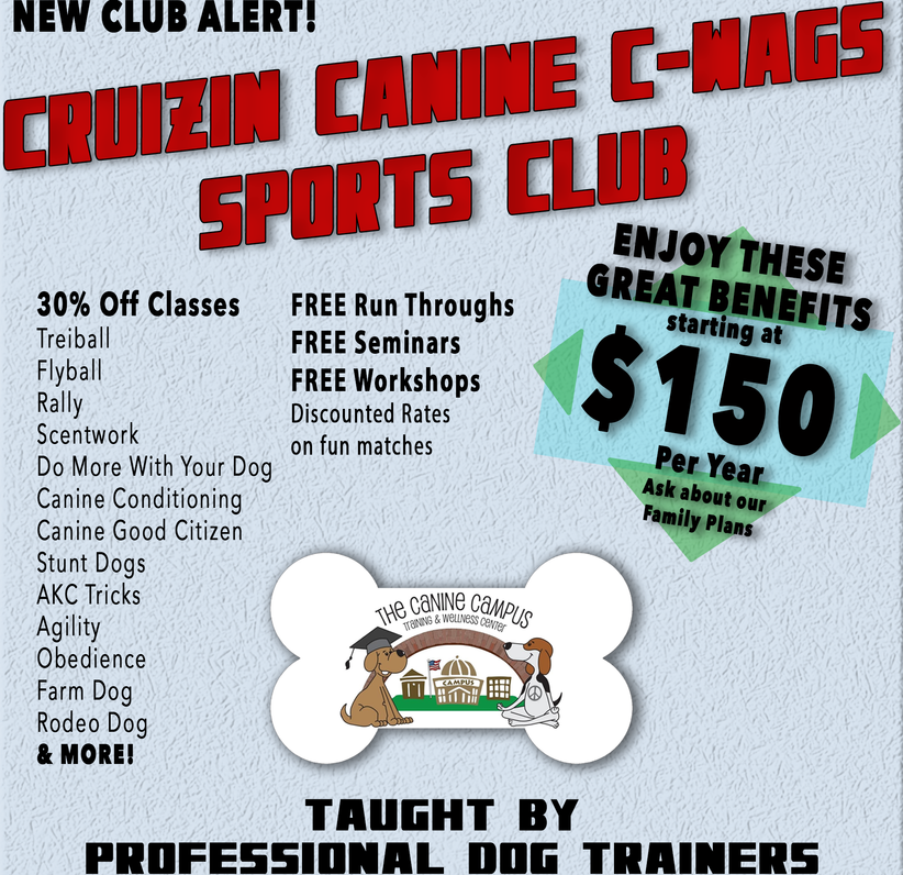 Cruizin Canine Sports Club at The Canine Campus in Hubbard and Howland!