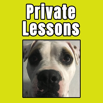 private lessons tile.png