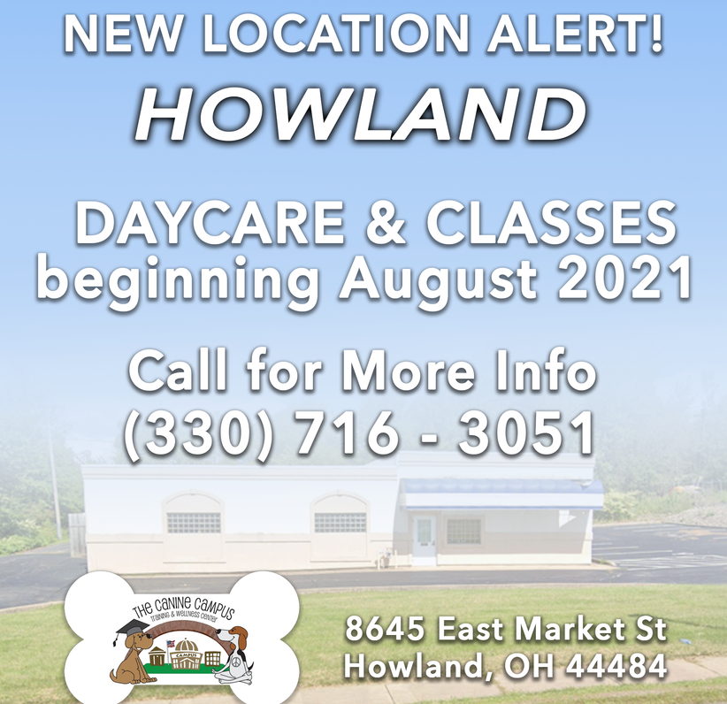 Daycare & Classes begin at our new Howland location in August 2021!
