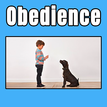 obedience tile.png