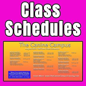 schedule tile copy.png