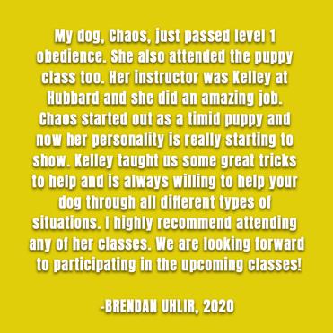 Brendan Uhlir and Chaos, 2020