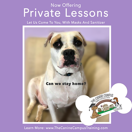Private Lessons copy.png