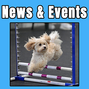 news events tile.png