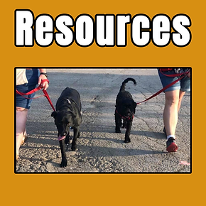 resources tile.png