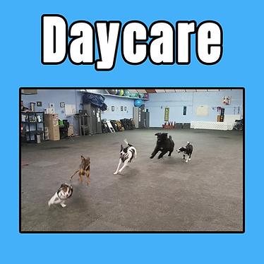 daycare tile2.png