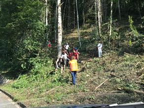 Bergung nach Forstunfall in der Nähe der Wehrerstube