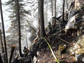 Großeinsatz Waldbrand Klettersteig Echernwand