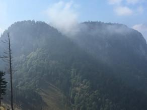 Bergsteiger 30m abgestürzt