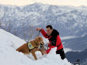 Hundestaffel Winterkurs I am Feuerkogel