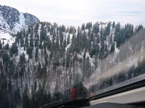 Wanderin aus steilem Waldgelände gerettet