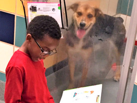 'Storytime at CAP' Invites Kids to Read at Local Animal Shelter