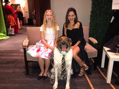 Heroic Katy Dog Honored at Gala