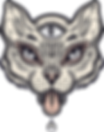 Gato com Third Eye