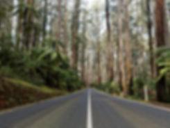 Maroondah Highway Healesville near Melbo