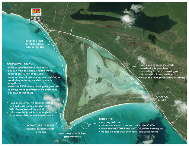 map shannas Cove - port royal