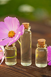 flower essences for anxiety