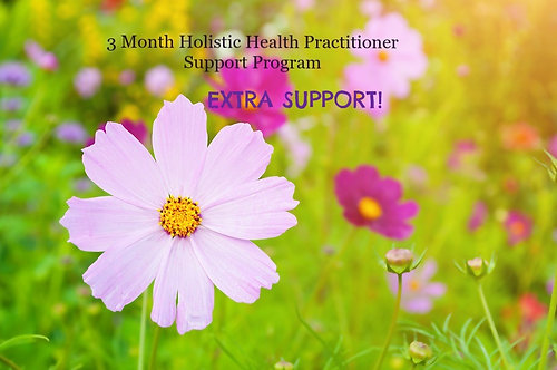 *EXTRA SUPPORT* Holistic Practitioner Support Program - OPTION 2