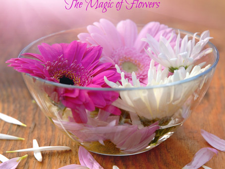 Magical Flower Remedies? Uh, Yes Please!