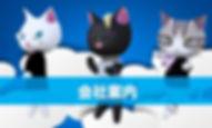company-profile.jpg