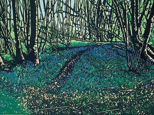 Jennifer Jokhoo - Emerald Forest