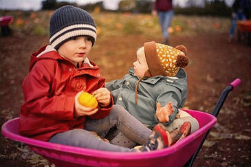 Children, Pumpkins, Wheelbarrow