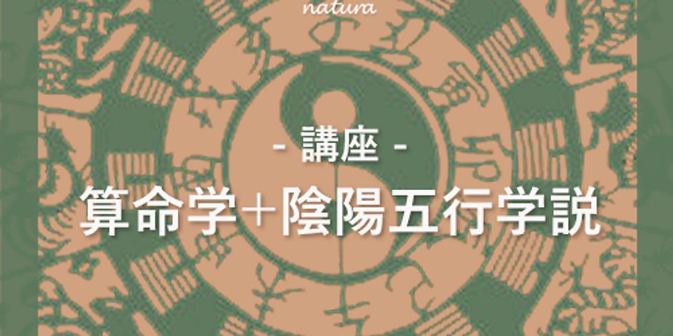 [オンライン]算命学+陰陽五行《2回目以降の方対象》 (1)
