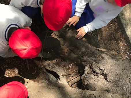 太陽組(年長)園外保育・礼拝・文字のおけいこ・床の拭き掃除・巧技台でジャンプ!がんばりました。