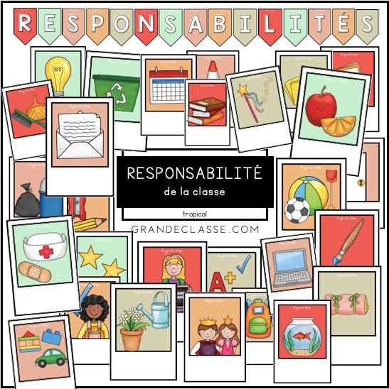 Responsabilités - tropical