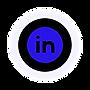 LINKEDIN ICON - BIZTOK.png