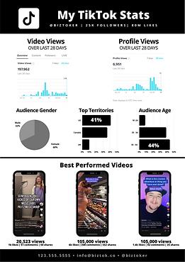 BizTok - Media Kit (1).png