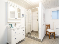 master bedroom shower room basement