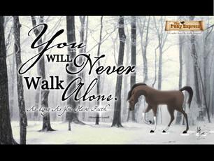 """You Will Never Walk Alone"""