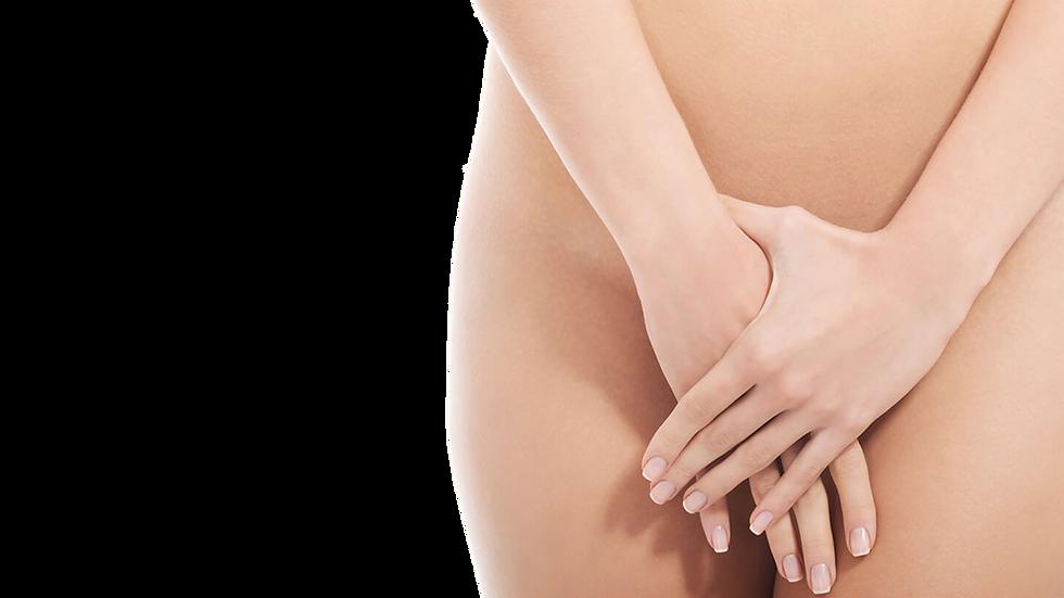 Estética-genital-femenina.png