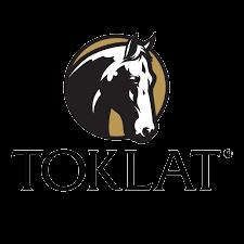 Toklat Logo (1).png
