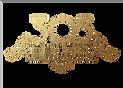 305 Logo Trans (1).png