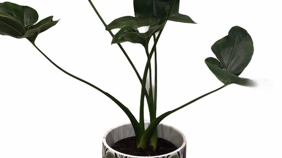 Philodendron Fun Bun in Botanical Pot