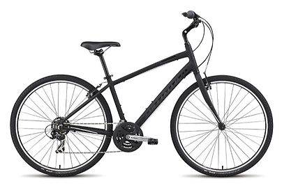hybrid bike rental
