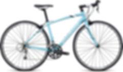 Road bike rentals