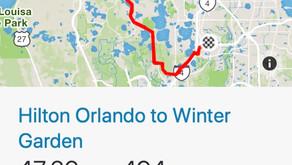 Hilton Orlando Resort